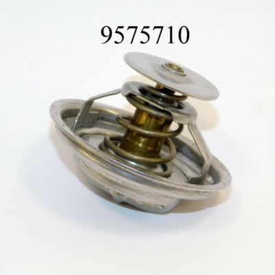 Termosztát BMW QTH492 FT7.8302
